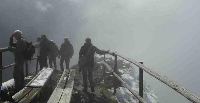 Symbolbild: Nebelwand